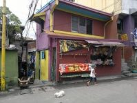 House and Lot for Sale in Narra St. Cembo Makati City