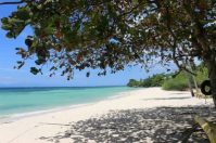 Beach Lot in Badian South of Cebu, Philippines For Sale