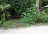 Residential Lot for Sale Paradahan, Ginatilan, Cebu
