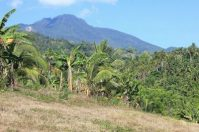Mountain View Lot for Sale in Camiguin, Clean Title