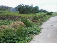 Multinational Village Paranaque Residential Lot for Sale