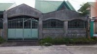New House and Lot for Sale Villa Sto. Rosario Capas Tarlac