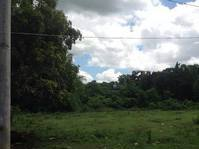 Luwasan Balasing Sta. Maria Bulacan Lot for Sale