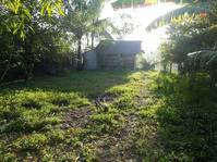 Mangas Sitio 5 San Vicente Paombong Bulacan Lot for Sale