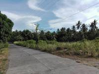 Mambayaan, Balingasag, Misamis Oriental Lot For Sale