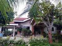 Nailon, Bogo, Cebu Beach House & Lot for Sale 081915