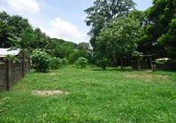 Cayambanan Urdaneta City Pangasinan Vacant Lot Sale