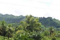 Laiya Aplaya San Juan Batangas Foreclosed Vacant Lot Sale