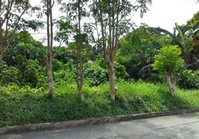 Sunny Side Subd, Quezon City Foreclosed Vacant Lot for Sale