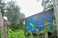 Barrio Poblacion Gen Tinio Nueva Ecija Vacant Lot Sale