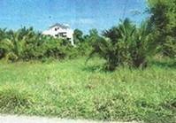 Concepcion Rosario La Union Foreclosed Vacant Lot Sale