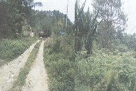 Irisan Tuba Benguet Foreclosed Vacant Lot Sale