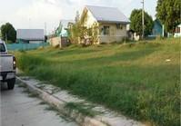 Minien West Sta Barbara Pangasinan Vacant Lot Sale