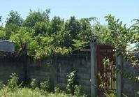 Barangay Agan-an Sibulan Negros Oriental Vacant Lot for Sale