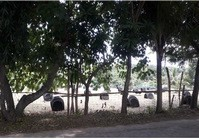 Barangay Burgos, Cadiz City Foreclosed Vacant Lot for Sale