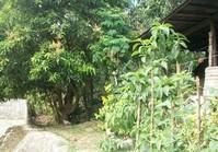Barangay Dulong Bayan San Jose Del Monte House Lot Sale
